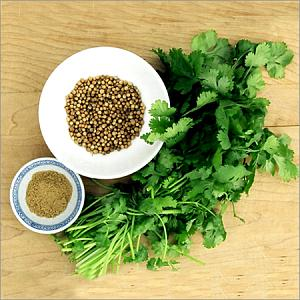 Coriander-Leaves-Seeds.jpg